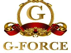 G Force Paper Products Industries